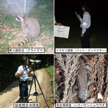 動植物調査-1