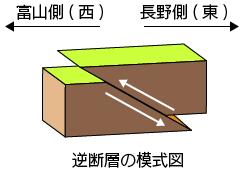 逆断層模式図